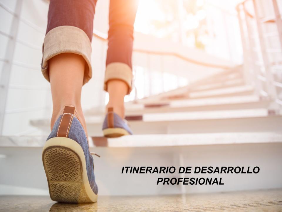 Itinerario-de-desarrollo-profesional-c.s-2